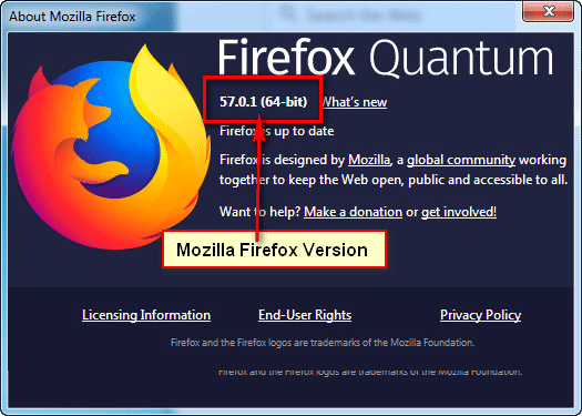 How to check Firefox Version