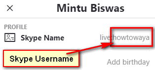 How to Check MY Skype Username