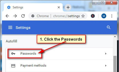 Show Chrome Saved Password